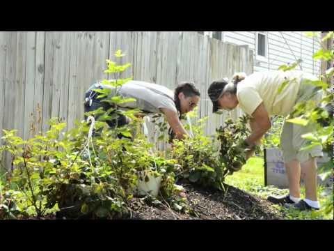 Millvale Community & Rain Garden