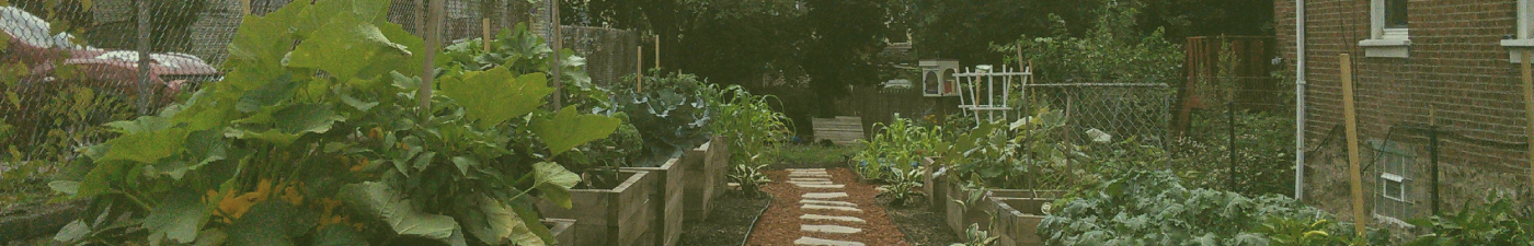 Beloved-Community-Garden-Project-Banner