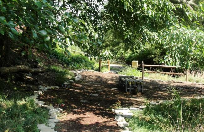 Biggs Hillside Garden Nicole