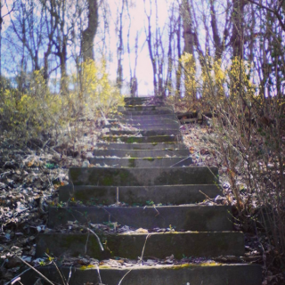 Northside steps